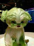 veggiedog1