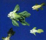 veggiefish